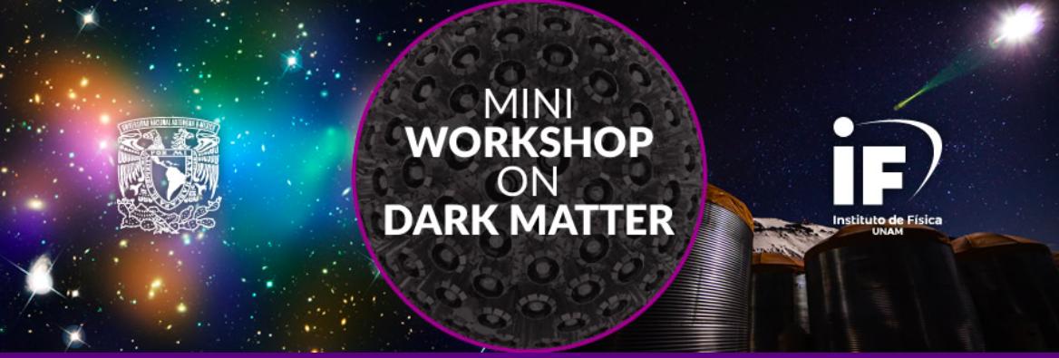Mini-Workshop on Dark Matter
