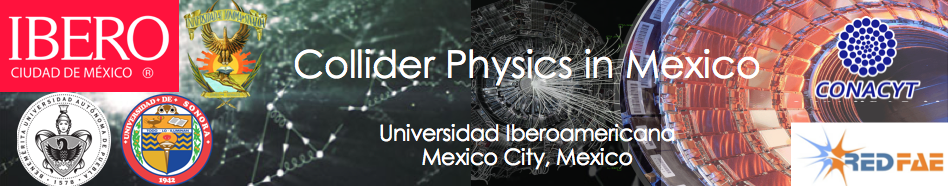 Collider Physics in Mexico